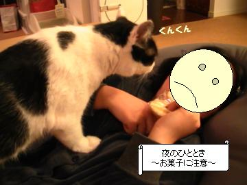 せんべい-1.JPG