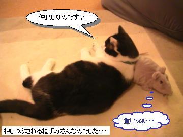 ねずみさん-3.JPG