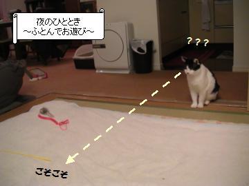 ふとん-1.JPG