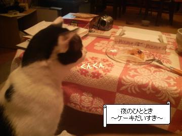 ケーキ-1.JPG