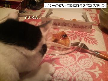 ケーキ-2.JPG