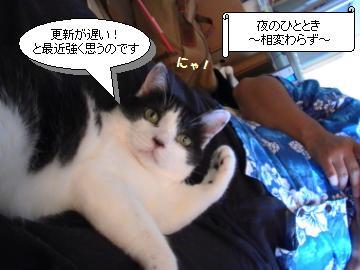 ゲーマー1.JPG