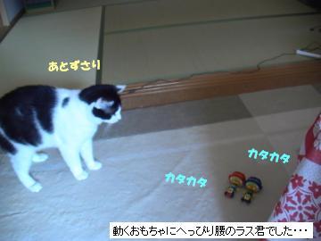 タップダンス-4.JPG