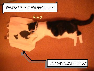 トートバック-1.JPG