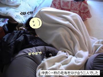 二人毛布-2.JPG