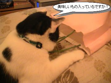 紙袋-2.JPG
