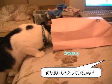 紙袋-3.JPG