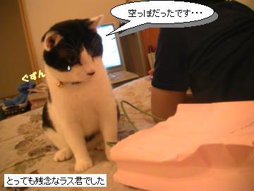 紙袋-4.JPG
